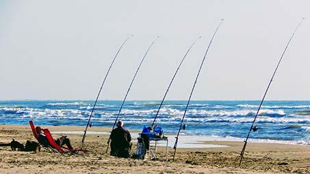 Pêche en Camargue