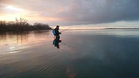 Pêcher en Camargue