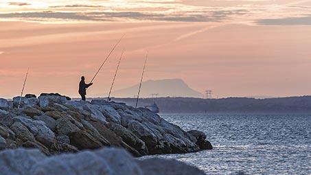 Pêcher des poissons en Camargue