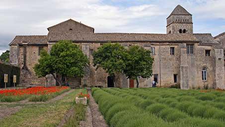 Visiter saint remy de provence
