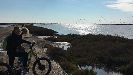 camping en camargue pour vélo