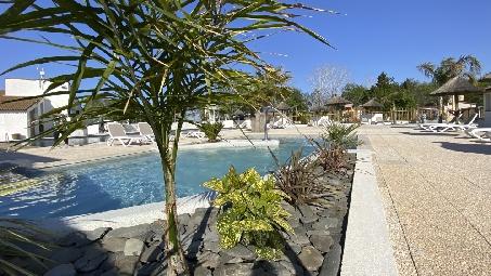 plante-piscine-camping-arles